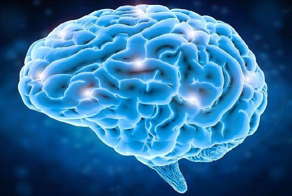 هوش مصنوعی تاثیرات روانگردان بر مغز را بررسی کرد