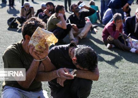 جمعآوری ۲۱۷ معتاد متجاهر در اهواز